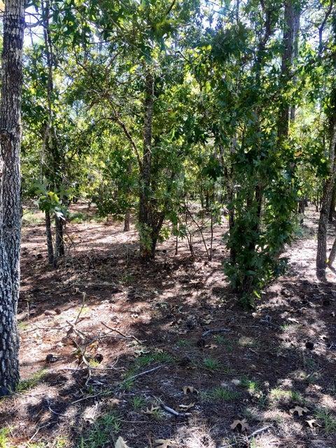 Carolina Plantations Real Estate - MLS Number: 100086529