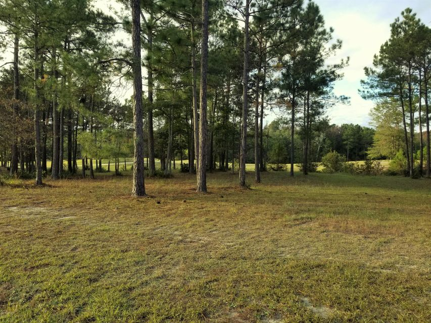 Carolina Plantations Real Estate - MLS Number: 100089775