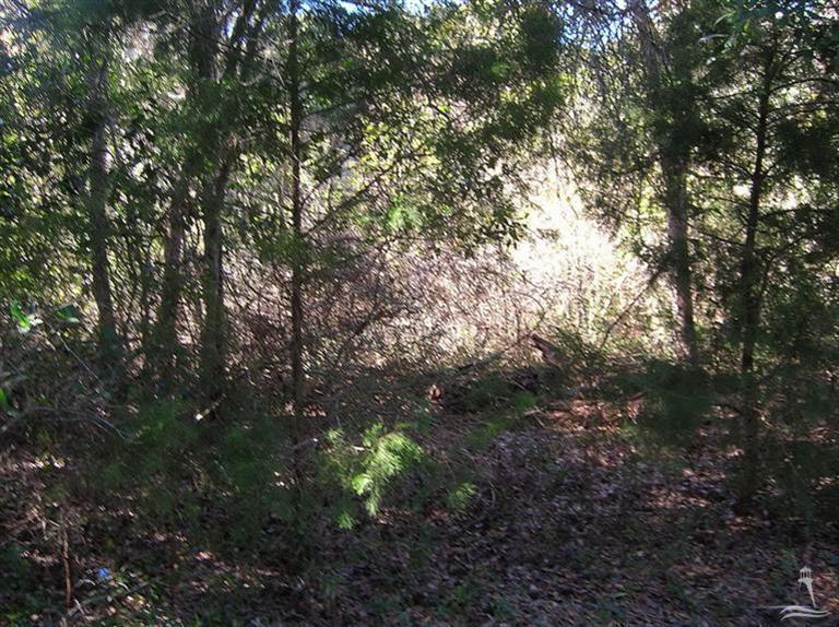 Carolina Plantations Real Estate - MLS Number: 100090391