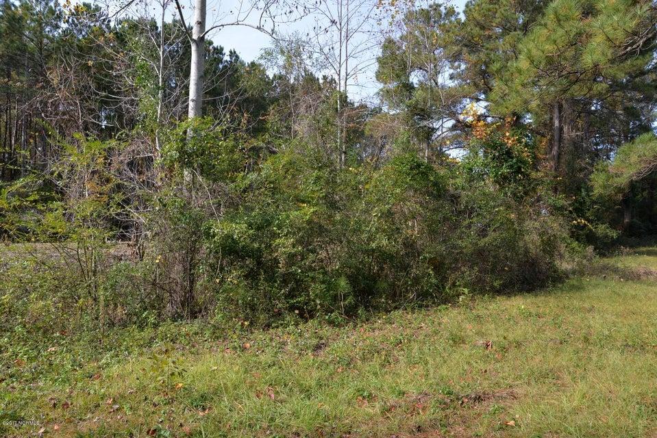 Pine Burr Acres Real Estate - http://cdn.resize.sparkplatform.com/ncr/1024x768/true/20171124150620038668000000-o.jpg