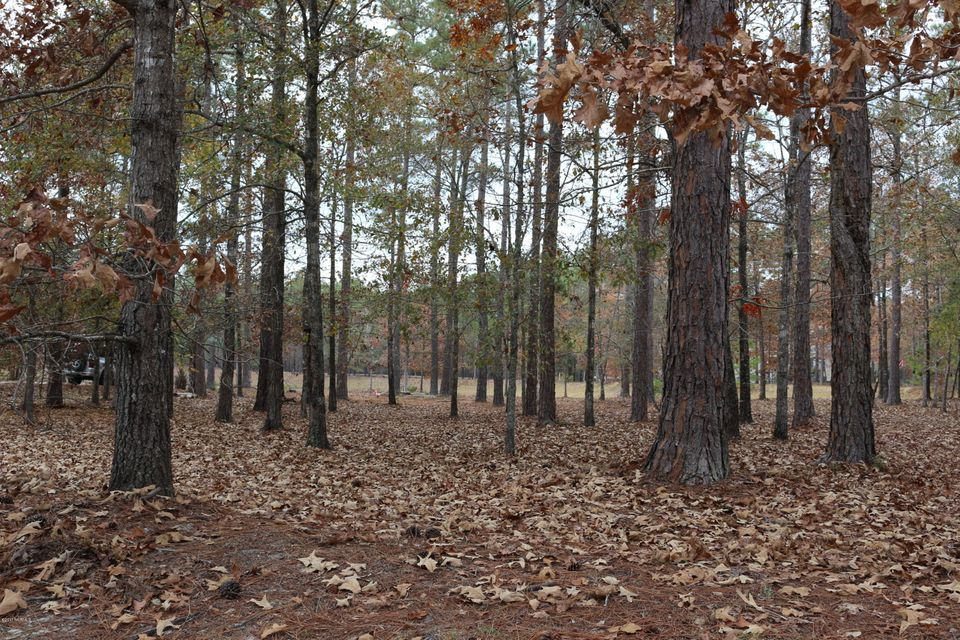 650 Ashbury Drive,Bolivia,North Carolina,Residential land,Ashbury,100091960