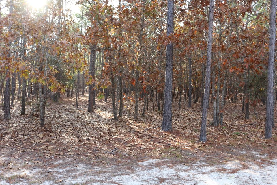 Carolina Plantations Real Estate - MLS Number: 100091969