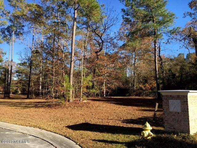Carolina Plantations Real Estate - MLS Number: 100092785