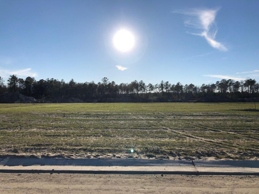 Carolina Plantations Real Estate - MLS Number: 100078775