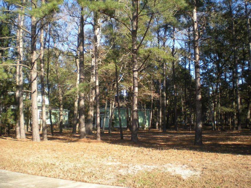 Carolina Plantations Real Estate - MLS Number: 100095250