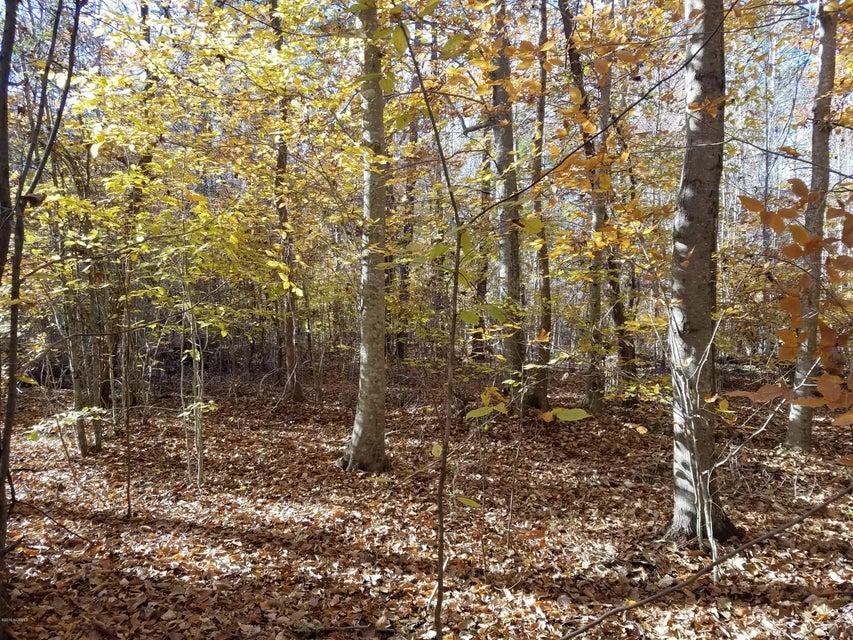 5 See View Lane,Hertford,North Carolina,Residential land,See View,100058164