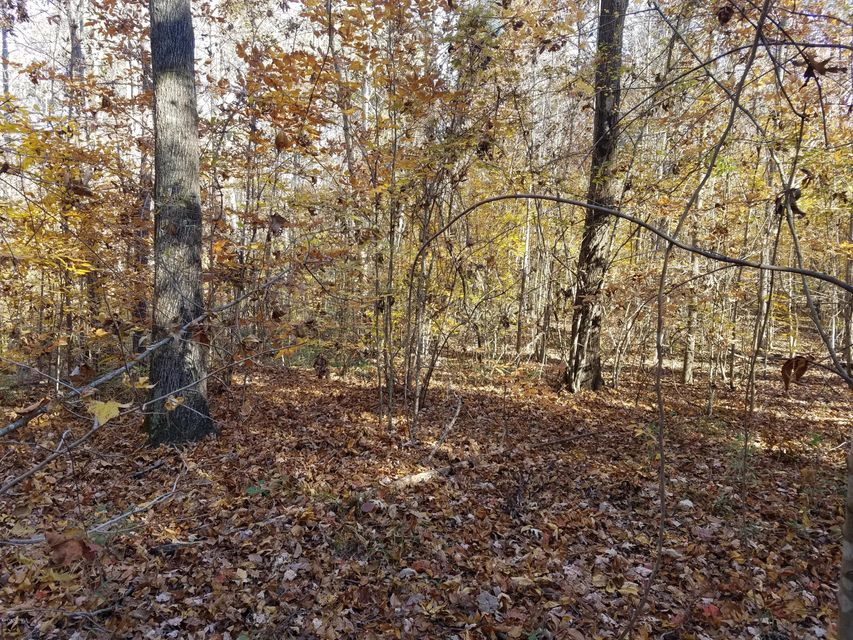 6 & 7 See View Lane,Hertford,North Carolina,Residential land,See View,100058177