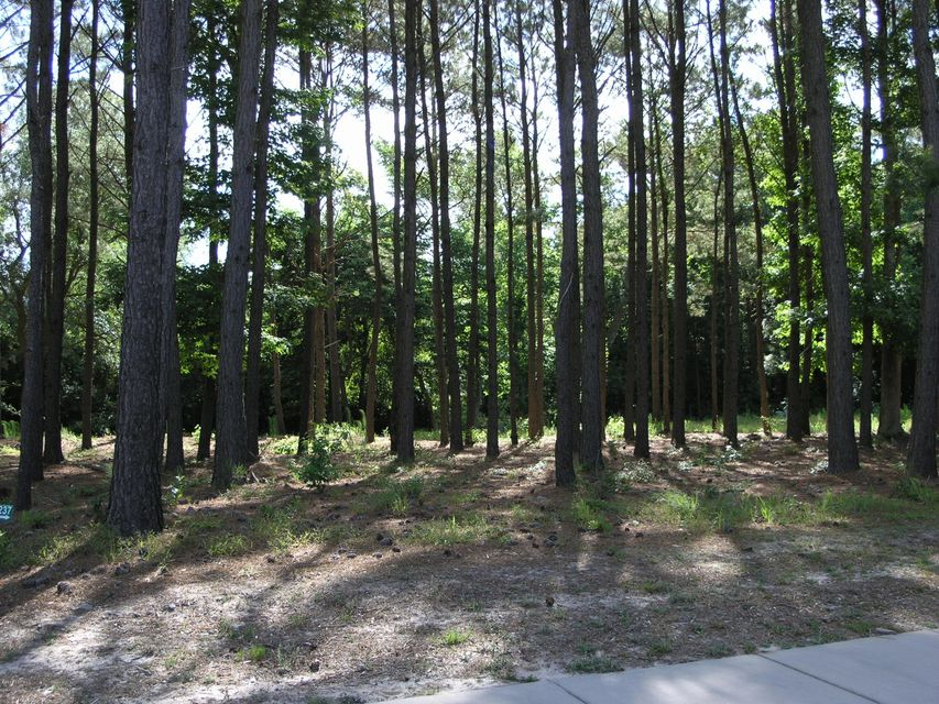Carolina Plantations Real Estate - MLS Number: 100095723
