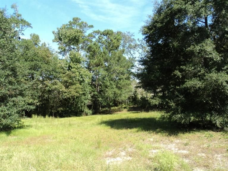 Carolina Plantations Real Estate - MLS Number: 100095775