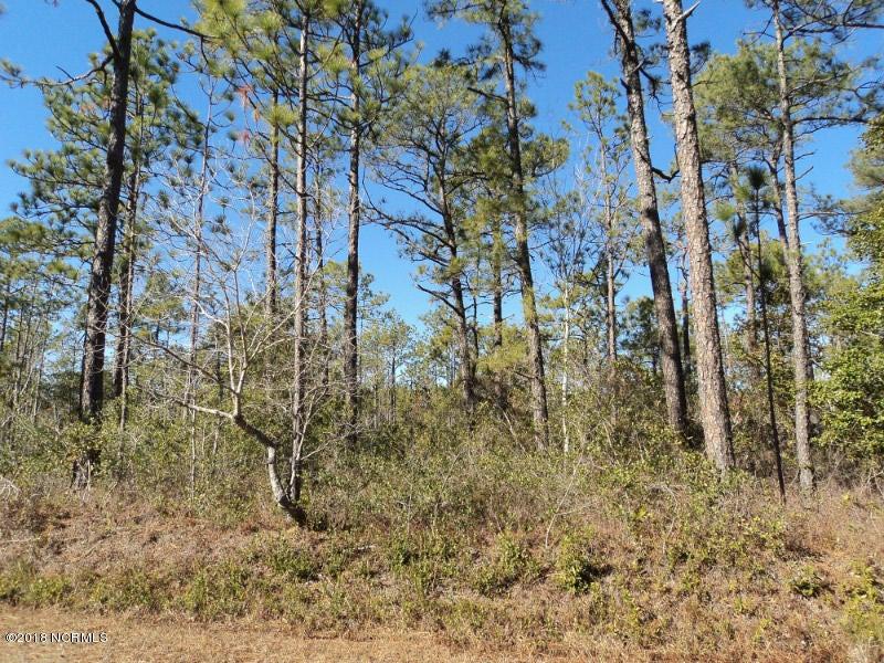 Carolina Plantations Real Estate - MLS Number: 100096826