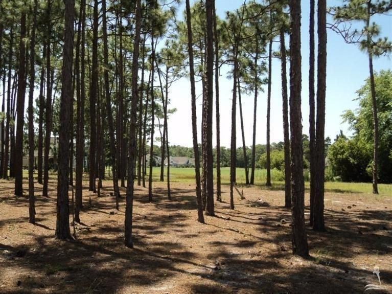 Carolina Plantations Real Estate - MLS Number: 100097495