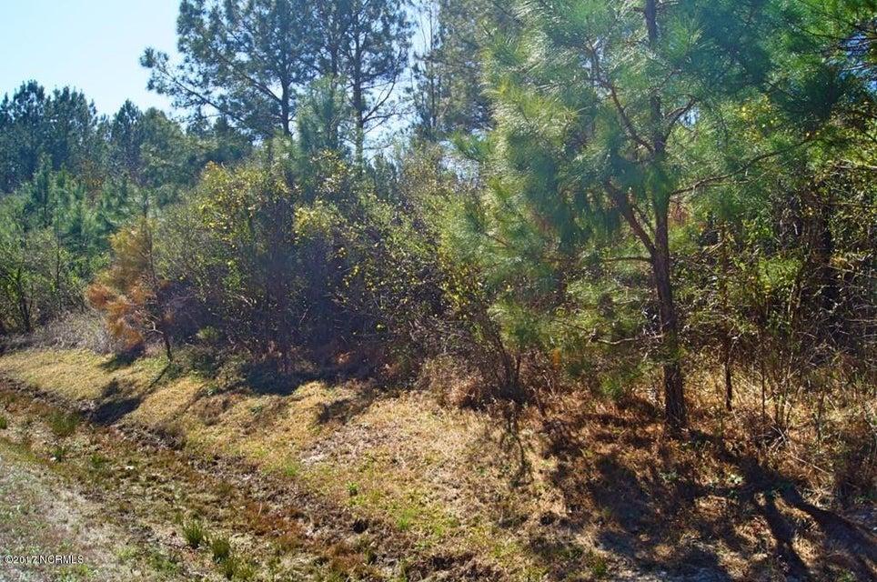 Lot 54 Eagle Nest Trail,Blounts Creek,North Carolina,Undeveloped,Eagle Nest,100097602