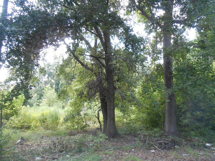Carolina Plantations Real Estate - MLS Number: 100098300