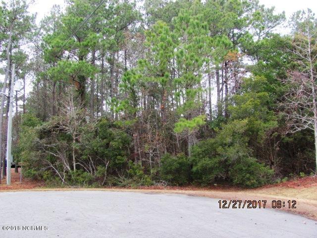124 Pearl Drive,Beaufort,North Carolina,Residential land,Pearl,100098326
