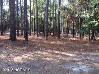 Carolina Plantations Real Estate - MLS Number: 100098499