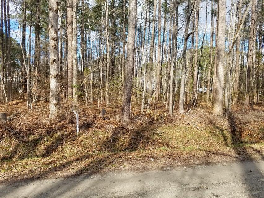 Lot 40 Oak Drive,Blounts Creek,North Carolina,Undeveloped,Oak,100098529