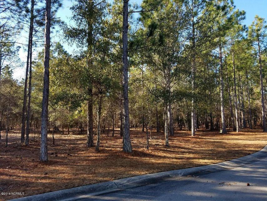 Carolina Plantations Real Estate - MLS Number: 100098891