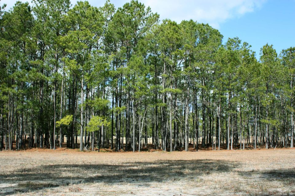 Carolina Plantations Real Estate - MLS Number: 100099367