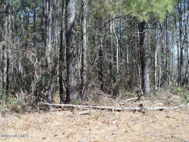 Carolina Plantations Real Estate - MLS Number: 100099503
