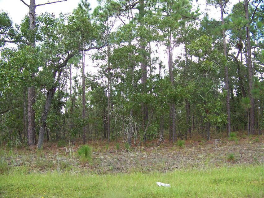 Carolina Plantations Real Estate - MLS Number: 100099870