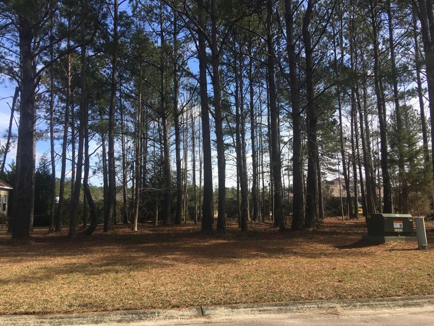 Carolina Plantations Real Estate - MLS Number: 100100156