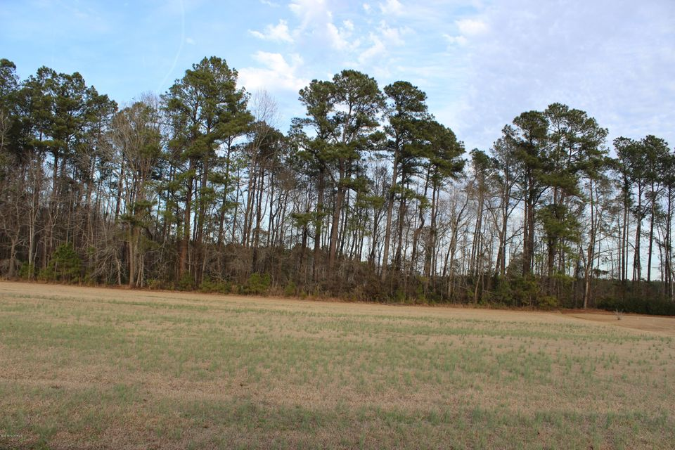 Carolina Plantations Real Estate - MLS Number: 100100259