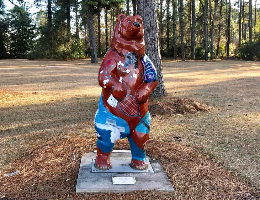 1731 Caracara Drive,New Bern,North Carolina,Residential land,Caracara,100100464