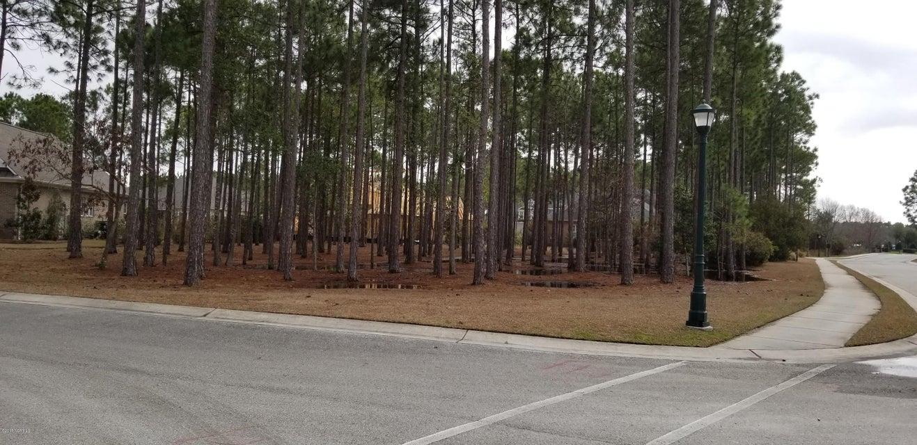 Carolina Plantations Real Estate - MLS Number: 100100837