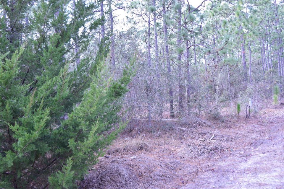 Carolina Plantations Real Estate - MLS Number: 100101427