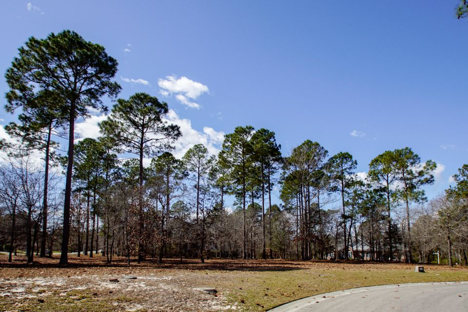 Carolina Plantations Real Estate - MLS Number: 100104009