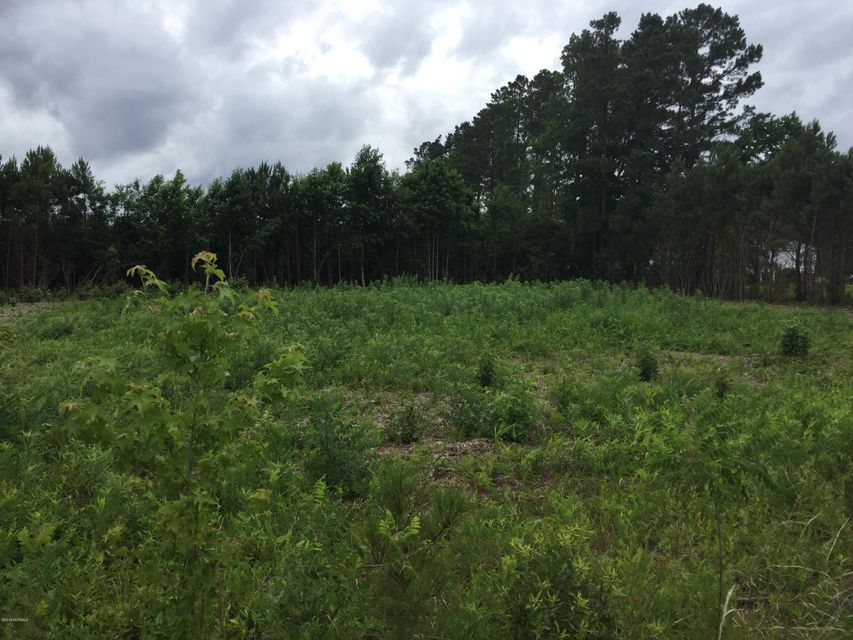 Lot# 17 Kitrell Avenue,Belhaven,North Carolina,Residential land,Kitrell,100103165