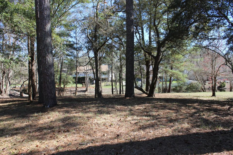 Carolina Plantations Real Estate - MLS Number: 100103648