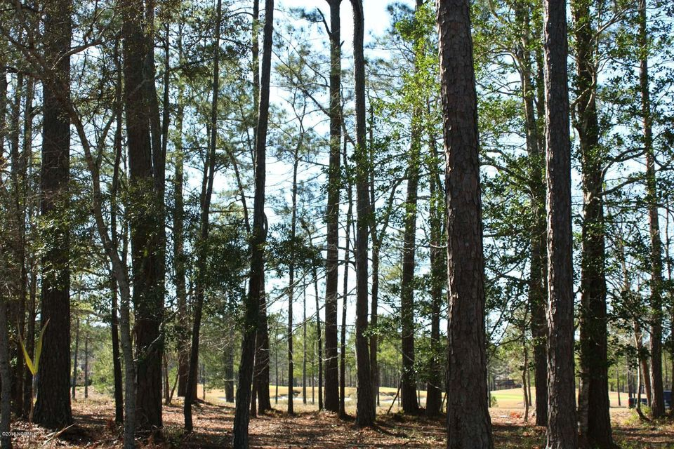 Carolina Plantations Real Estate - MLS Number: 100104146