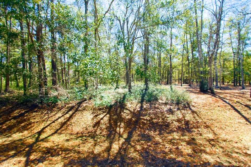 Carolina Plantations Real Estate - MLS Number: 100106590