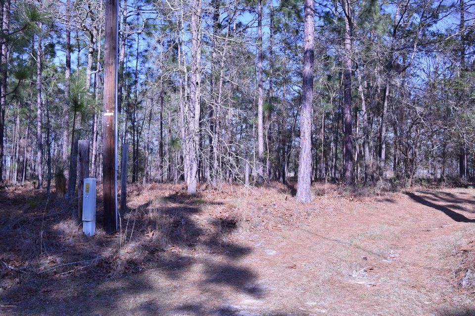 Carolina Plantations Real Estate - MLS Number: 100107131