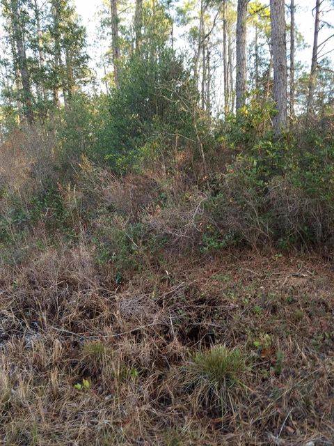 1051 West Haven Road,Southport,North Carolina,Residential land,West Haven,100105662