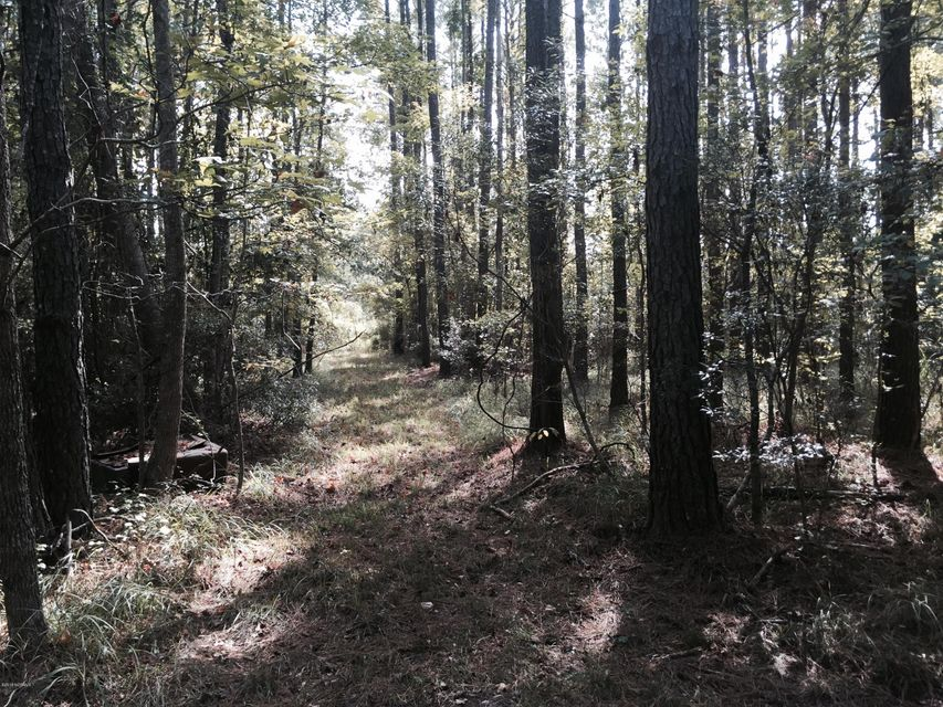 Property for sale at 00 White Farm Road, Oriental,  North Carolina 28571