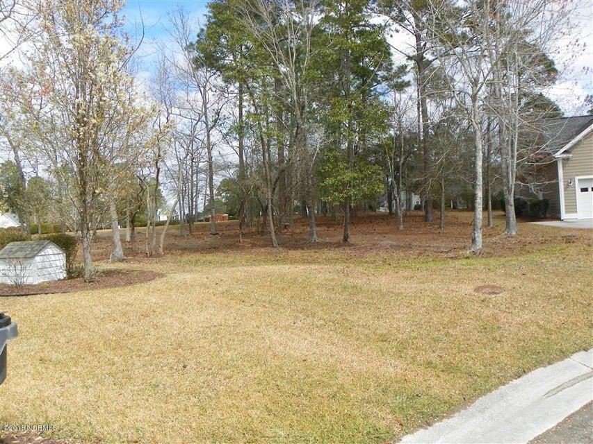 488 Switch Grass Court,Bolivia,North Carolina,Residential land,Switch Grass,100106623