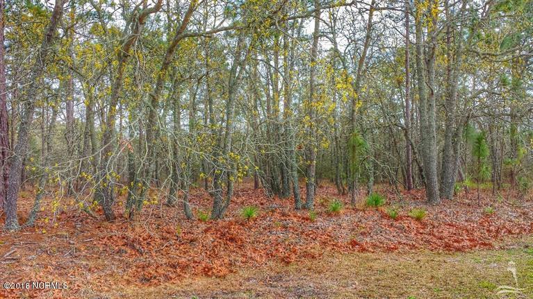 Carolina Plantations Real Estate - MLS Number: 100107124