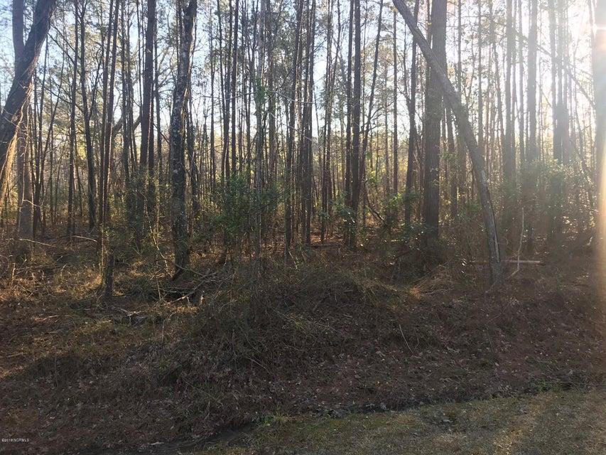 62 Fontana Lane,Elizabethtown,North Carolina,Residential land,Fontana,100107238