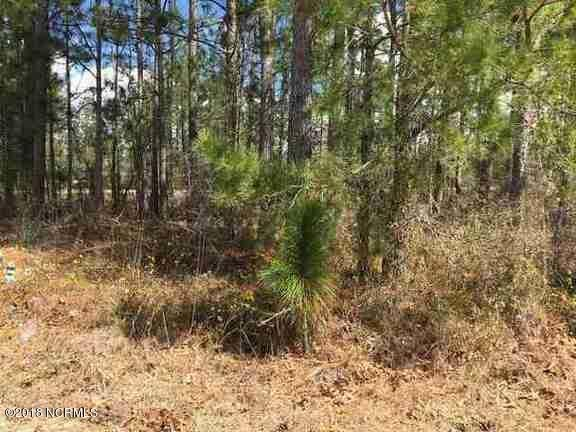 1305 Quail Ridge Loop,Leland,North Carolina,Residential land,Quail Ridge,100107863