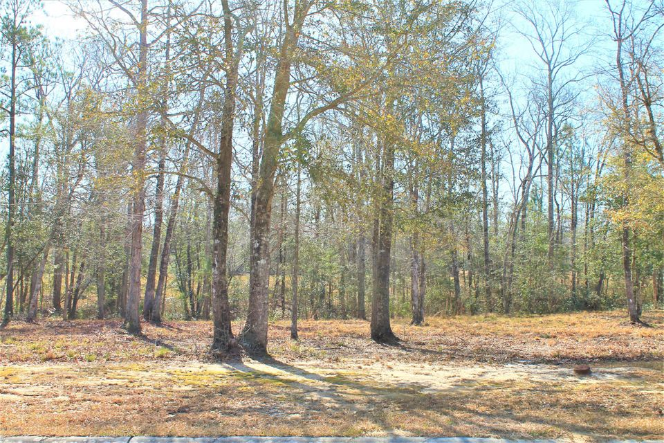 Carolina Plantations Real Estate - MLS Number: 100108210