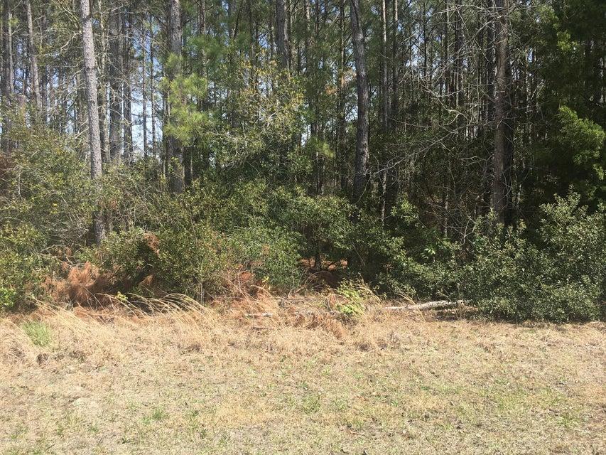 Carolina Plantations Real Estate - MLS Number: 100108353