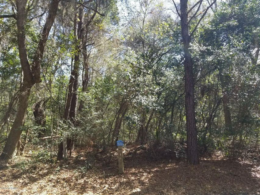 Carolina Plantations Real Estate - MLS Number: 100111390
