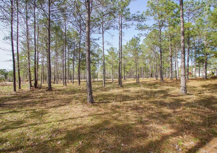 Carolina Plantations Real Estate - MLS Number: 100109616
