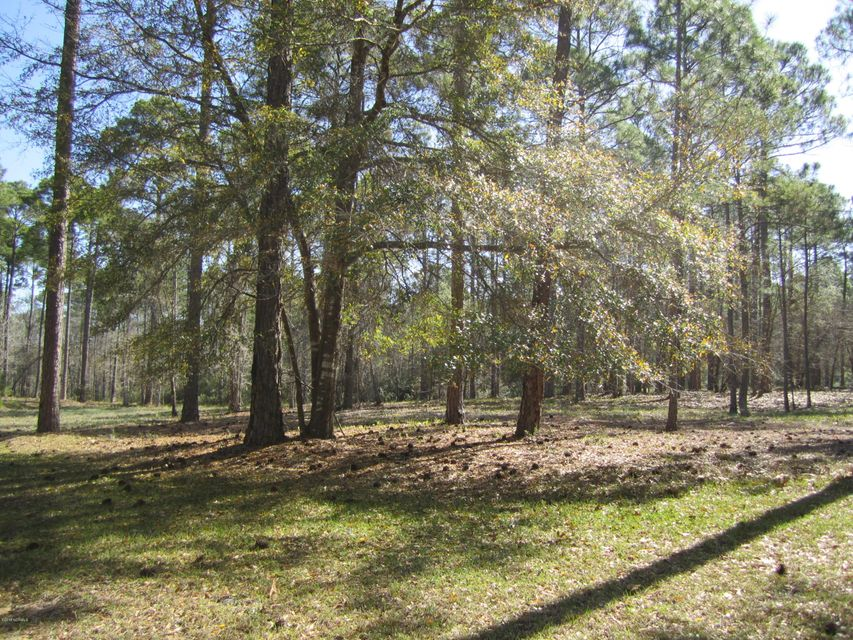 Carolina Plantations Real Estate - MLS Number: 100109836