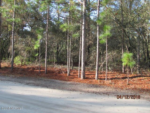 Carolina Plantations Real Estate - MLS Number: 100110258
