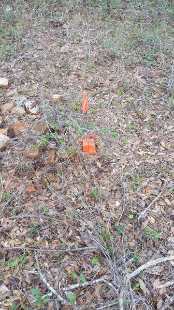 Carolina Plantations Real Estate - MLS Number: 100111181