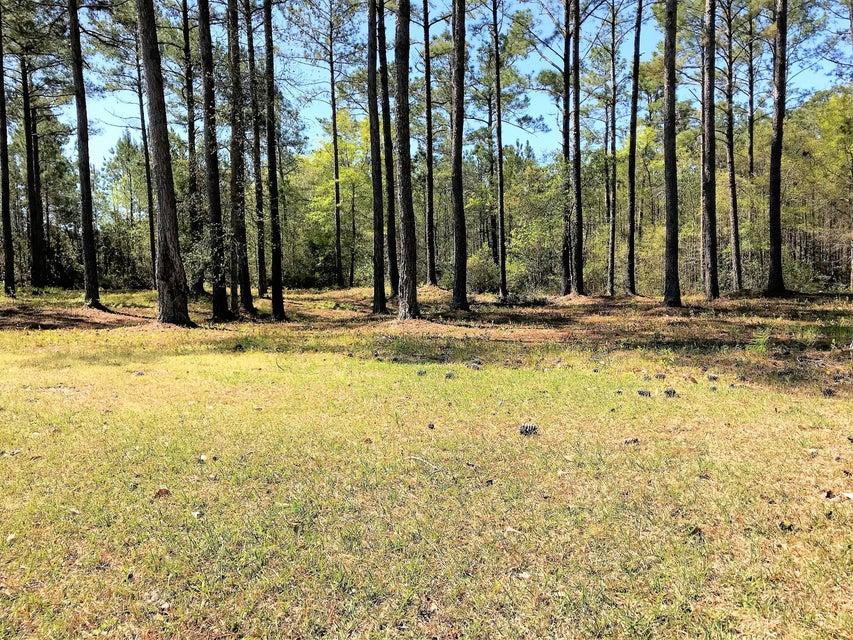 Carolina Plantations Real Estate - MLS Number: 100111309