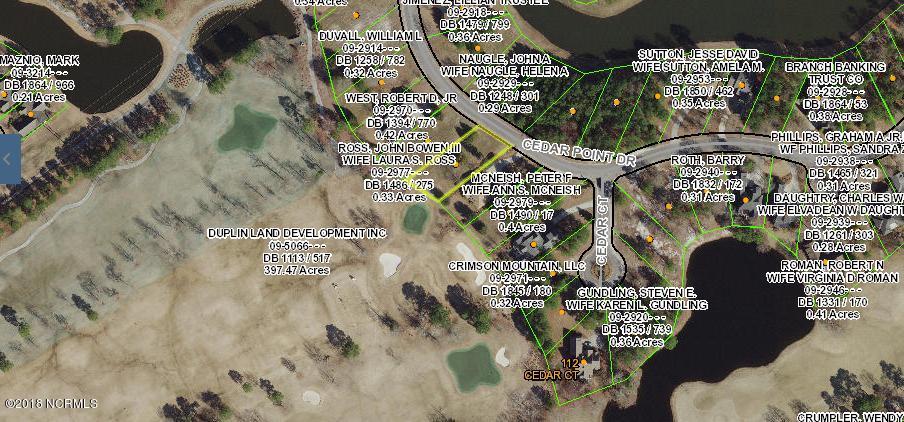 166 Cedar Point Drive,Wallace,North Carolina,Residential land,Cedar Point,100112587